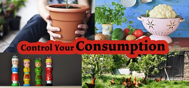 control your consumption 7 steps to greater independence part i
