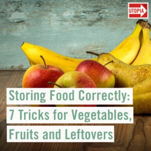 Storing Food Correctly: 7 Tricks for Vegetables, Fruits and Leftovers