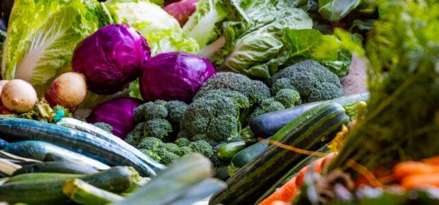 cabbage types - cabbage varieties
