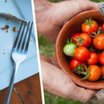 Reducing foods pro tips reduce food waste clean your plate and share