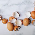 eggshells for plants
