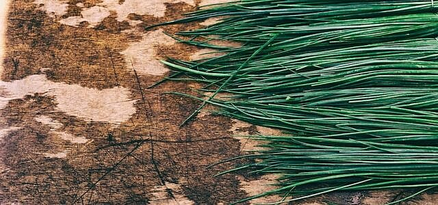 How to dry chives